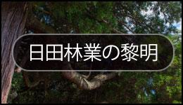 1.日田林業の黎明