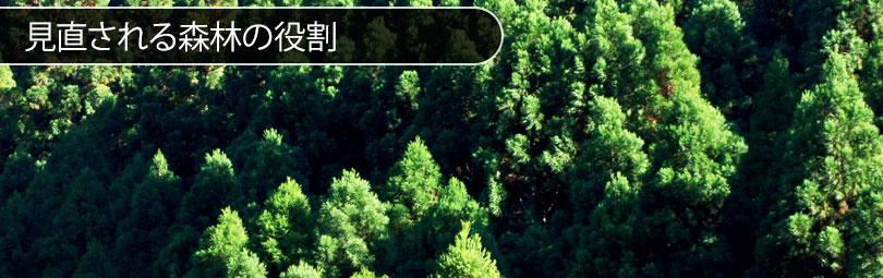 見直される森林の役割